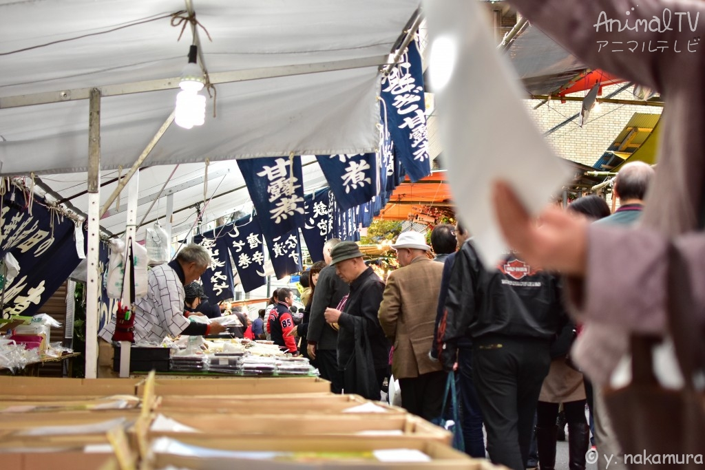 Japanese people are busy in December