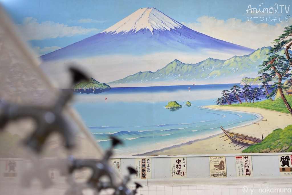 Mt, Fuji in a public bath