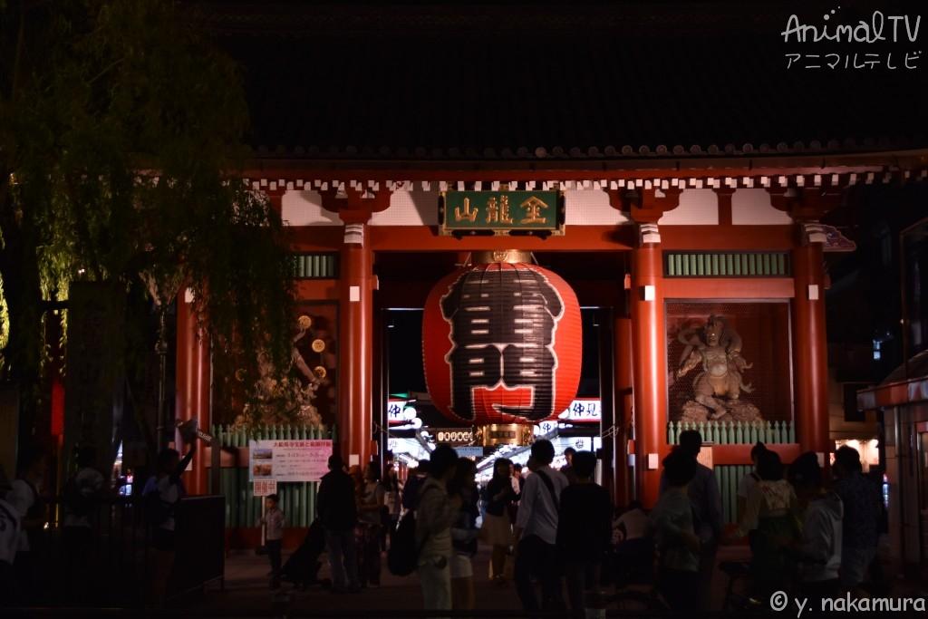 Asakusa, Tokyo Japan